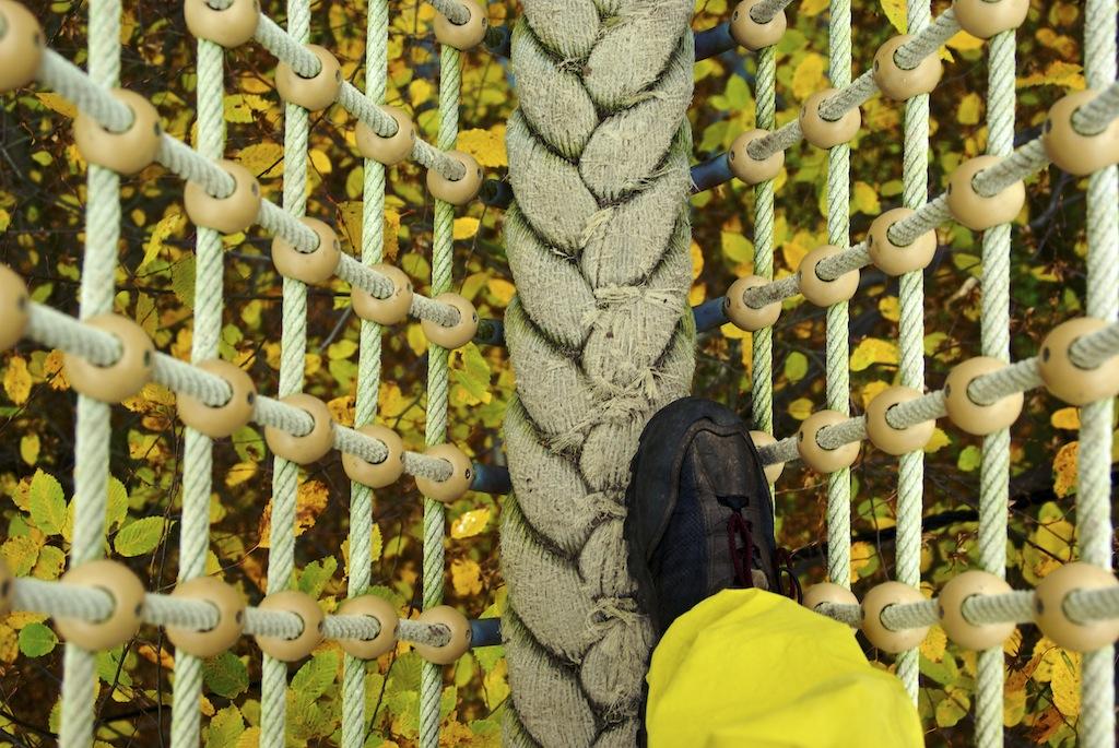 Nationalpark Hainich Baumwipfelpfad